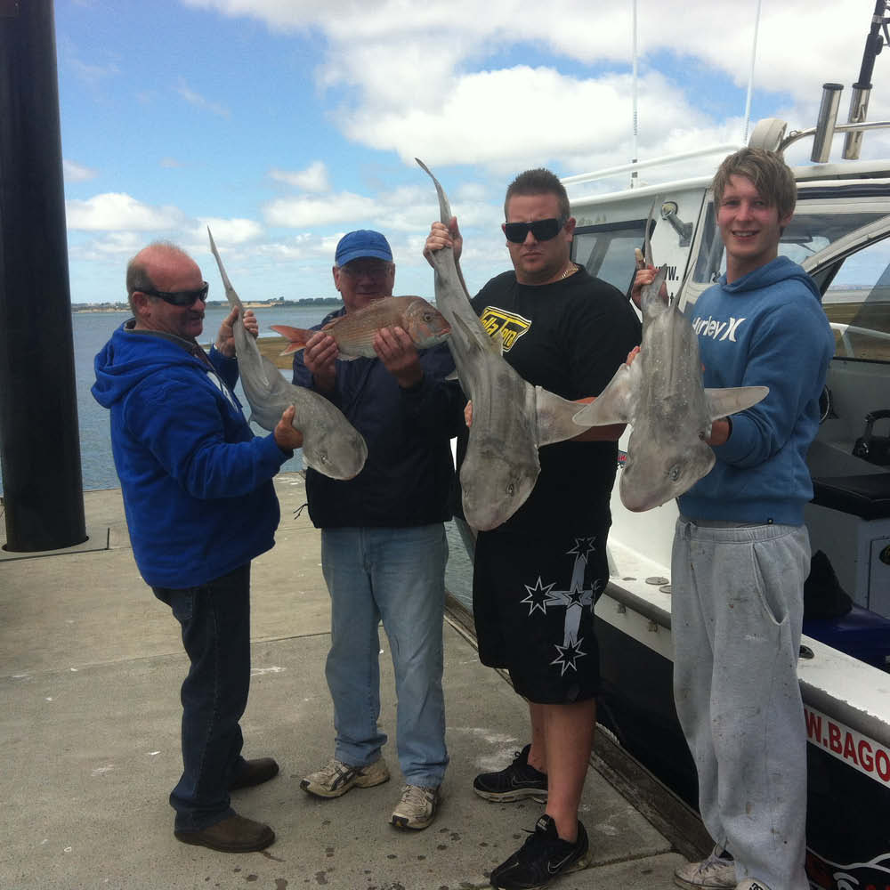 four men holding gummy sharks bag out fishing charters