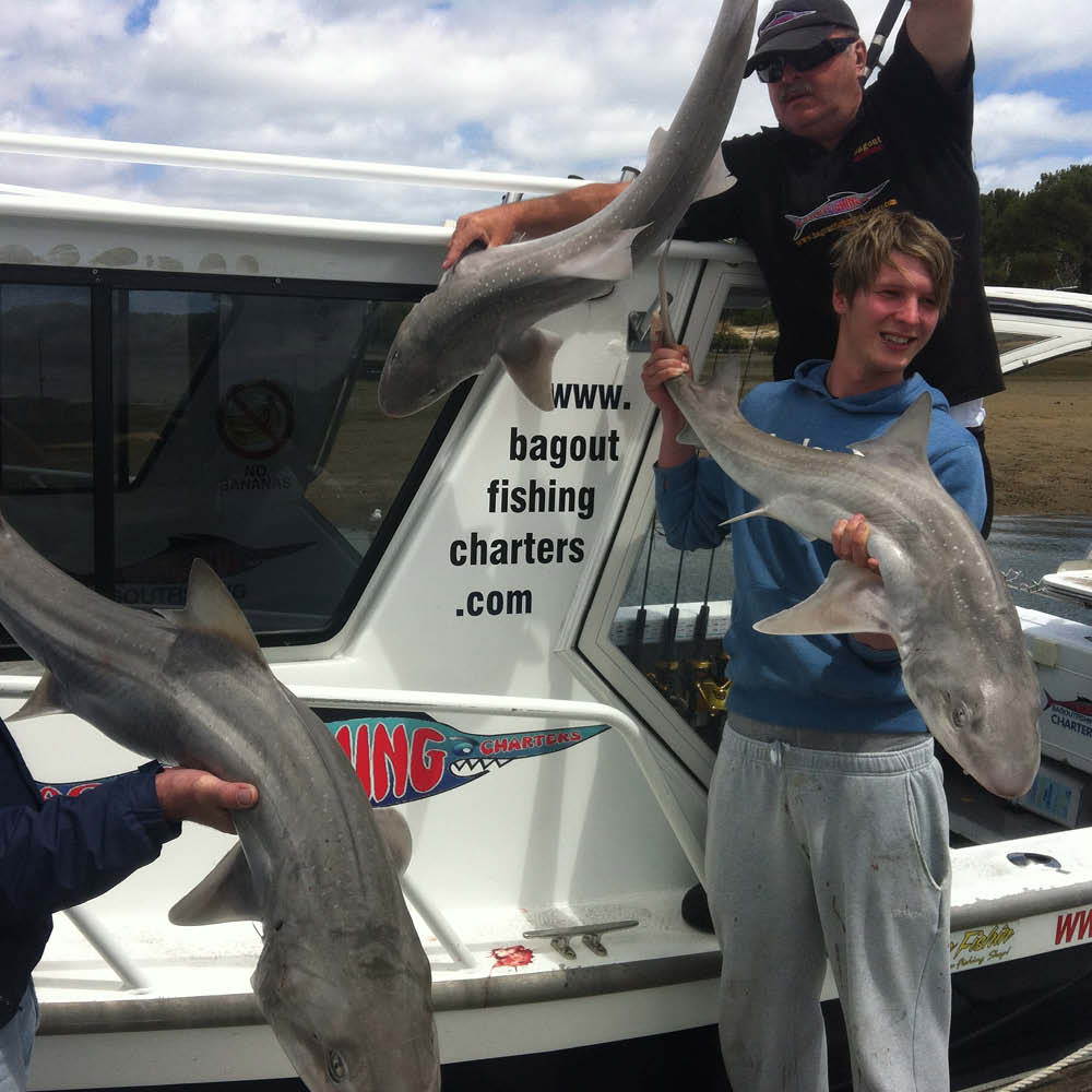 two men holding gummy sharks bag out fishing charters